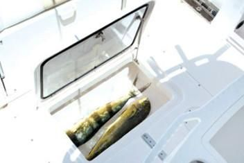 Everglades 255 Center Console image