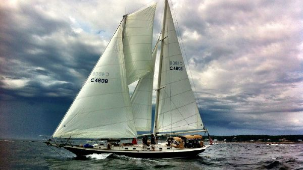 Cherubini Staysail Schooner