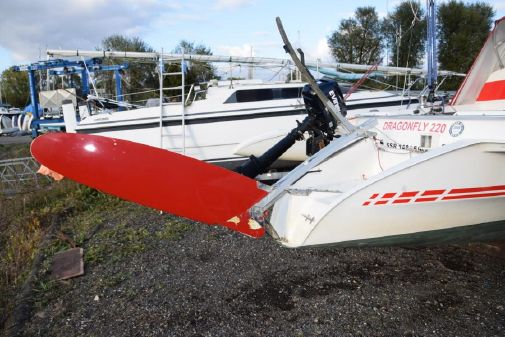 Dragonfly 800 Swing Wing image