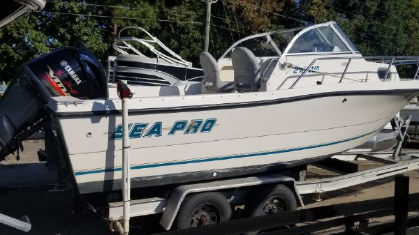 Sea Pro 210 Walk Around