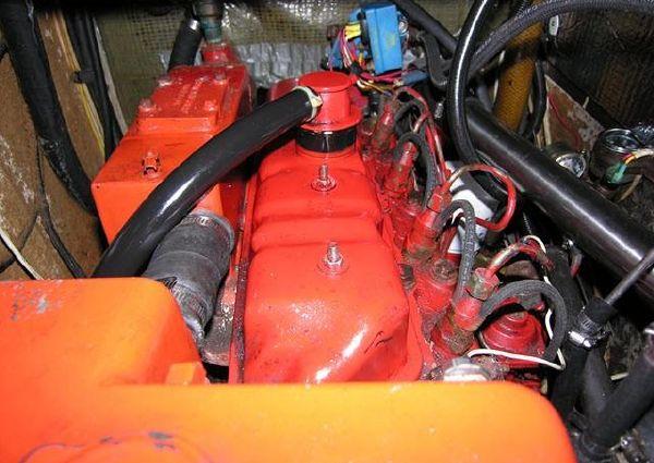 Warwick Cardinal 46 image