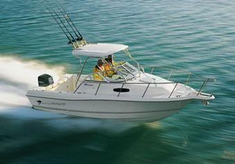 Wellcraft 24 Coastal Walkaround