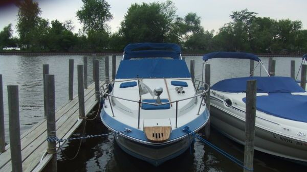 Sea Ray 250 Sundancer Photo 1