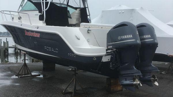 Robalo R305