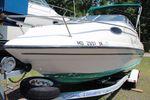Sea Master 208image