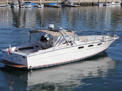1967 Magnum<span>Express cruiser</span>