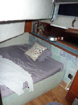 Bayliner 3818 image