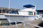 DeFever Offshore Cruiserimage