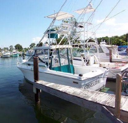 Baha Cruisers Weekend Tournament Fisherman - main image