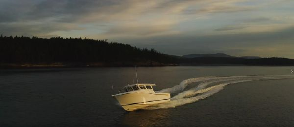 Ocean Sport Roamer 30' Diesel image