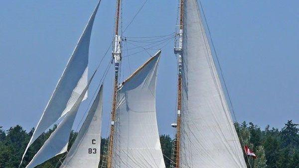 Custom Steel schooner