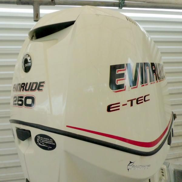 Evinrude  E-TEC 250hp 30 inch Shaft DI
