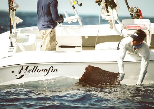 Yellowfin 29 Offshore image