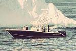 Yellowfin 39 OFFSHOREimage