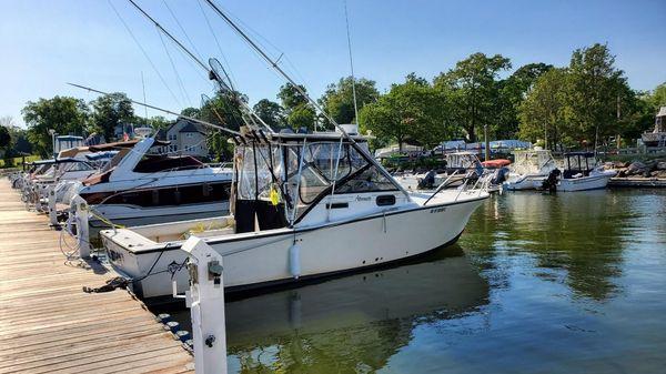 Albemarle Fisherman Express
