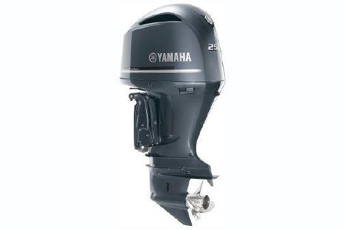 Yamaha Outboards F250 image