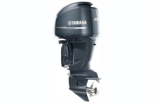 Yamaha Outboards F250 V6 image
