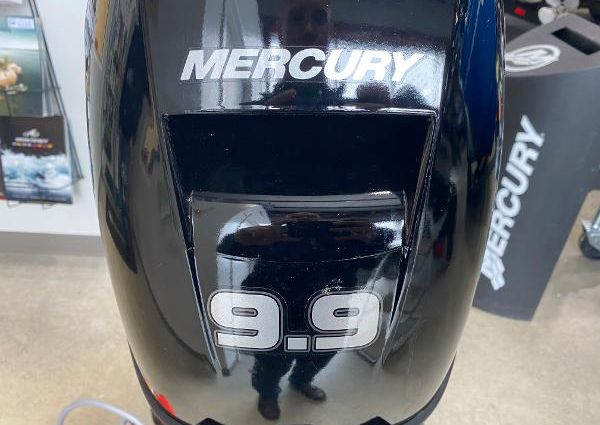 Mercury 9.9 4-Stroke  image