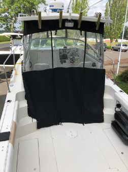 Seaswirl Striper 2601 Walkaround I/O image
