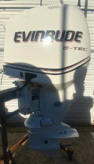 Evinrude E200DHXABH image