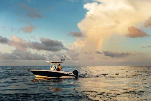 Wellcraft 242 Fisherman image