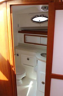 Back Cove 30 image