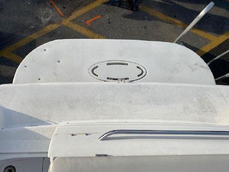 Larson Cabrio 260 image