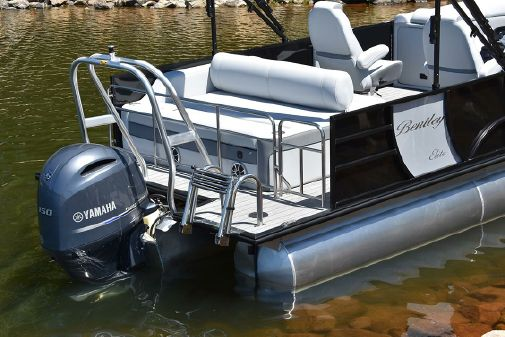 Bentley Pontoons 250 Elite Swingback Dual Captain image