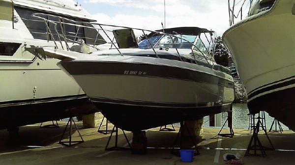 Chris-Craft 262 Amerosport