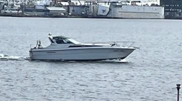 Sea Ray Cruiser