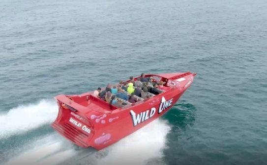 Smoky Mountain 24 Passenger Jet Boat image
