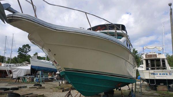 Sea Ray 305