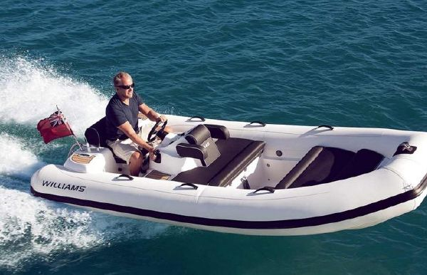 2018 Williams Jet Tenders Turbojet 445