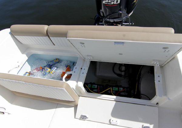 Sea Born LX22 Center Console image