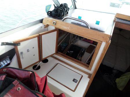 Sea Ray 270 Amber Jack image