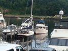 Marine Trader 36 Sedan Bridgeimage
