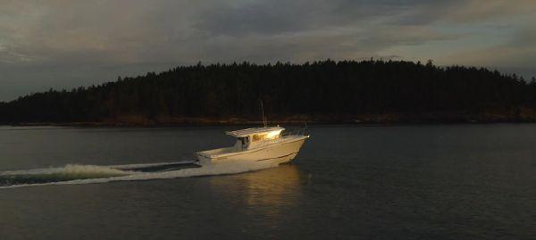 Ocean Sport Roamer 33' image