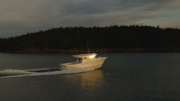 Ocean Sport Roamer 33'