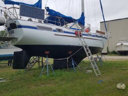 Wauquiez Amphitrite 43 image