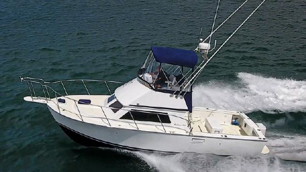 Blackman 29 Sportfisher