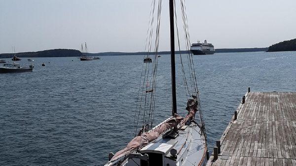 Concordia 31