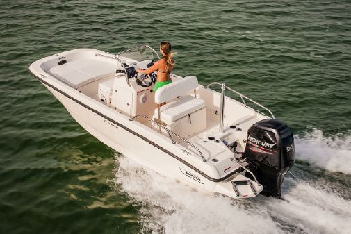 Boston Whaler 170 Dauntless image