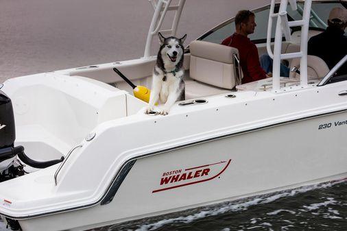 Boston Whaler 230 Vantage image