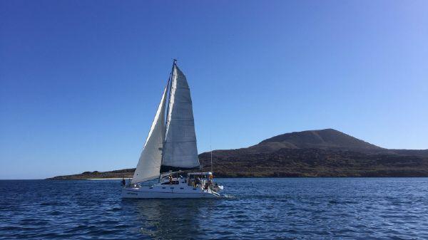 Fortuna Island Spirit 401