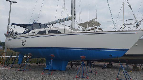 Catalina Morgan 440