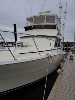 Viking Convertible Sport Fisherman image