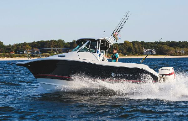 2017 Striper 2601 Walkaround