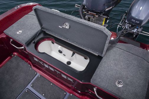 Skeeter WX 2200 image