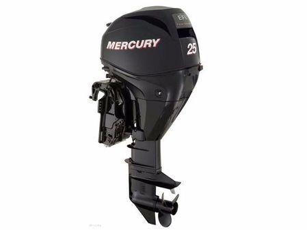 Mercury FourStroke 25 EFI image