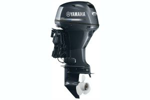 2018 Yamaha Outboards T25